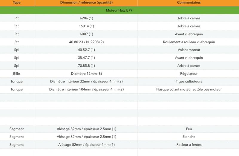 Remise en état d'un Staub PP4HDS - Page 4 Img_0220
