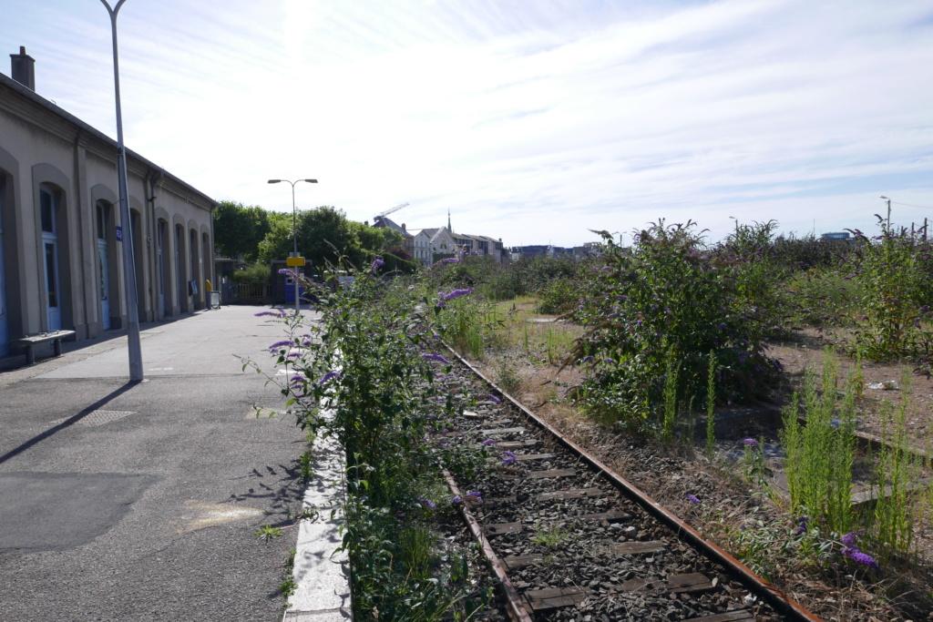 Modernisation de la ligne Bréauté - Fécamp - Page 2 P1000334