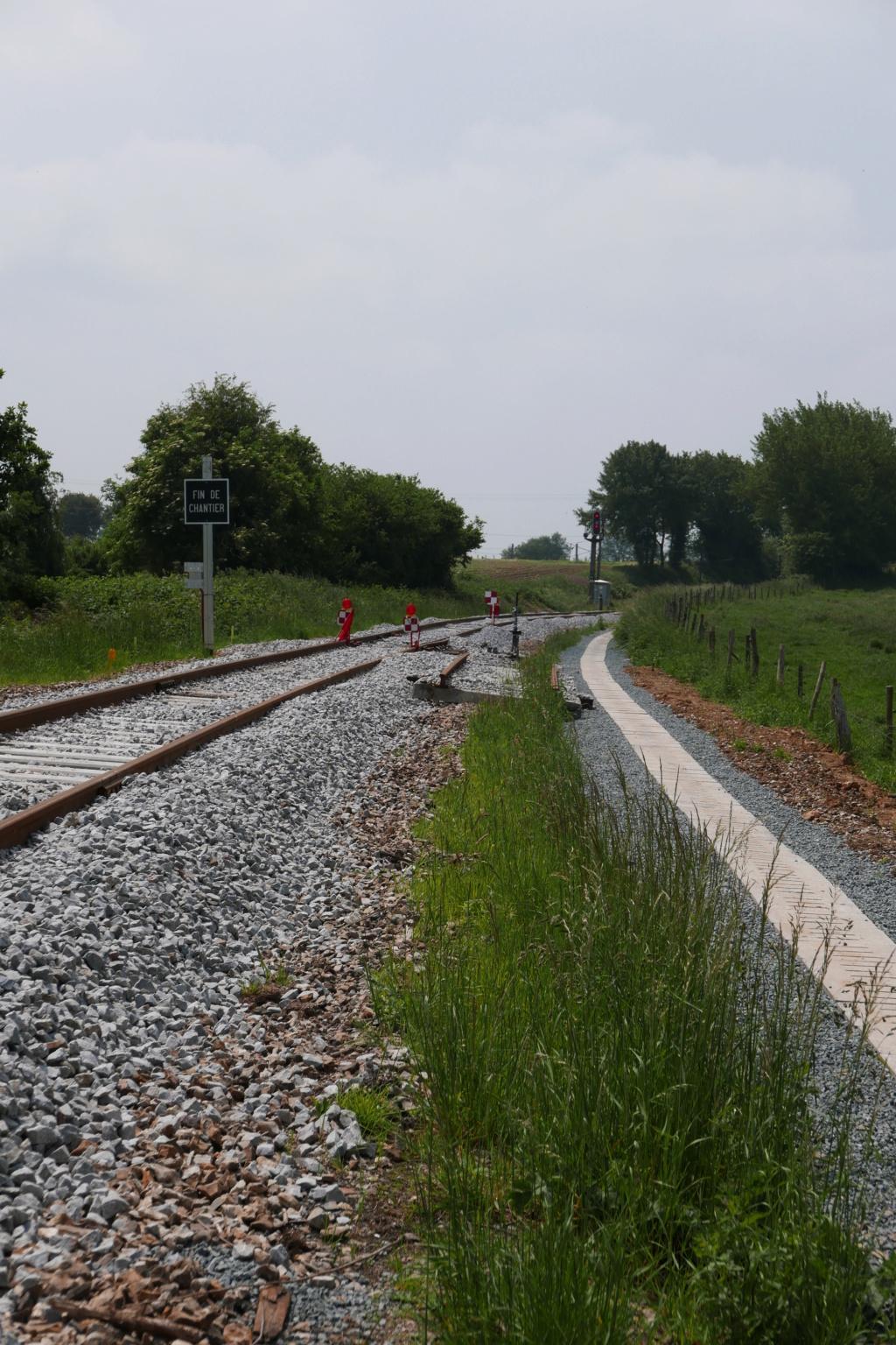 Modernisation de la ligne Bréauté - Fécamp - Page 3 P1010221