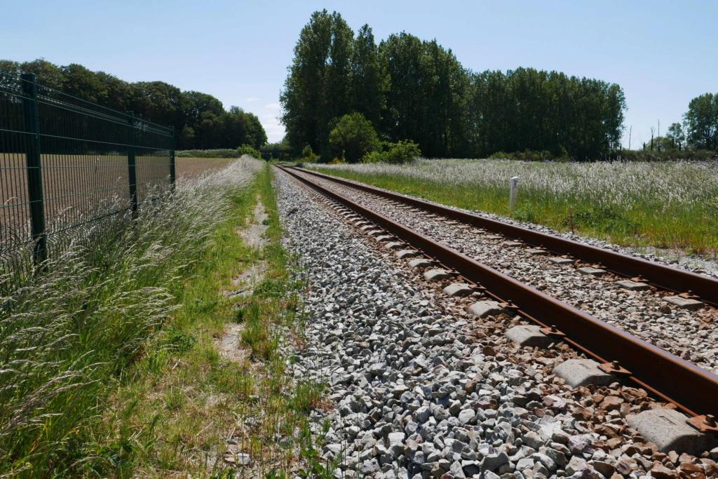 Modernisation de la ligne Bréauté - Fécamp - Page 3 P1050217