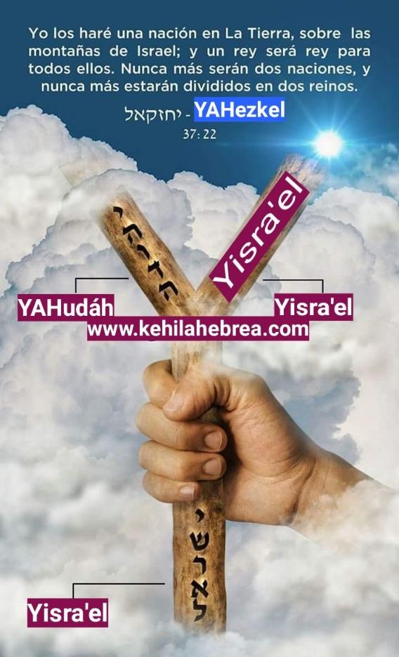 Shalom, yom tov - Página 15 15831411