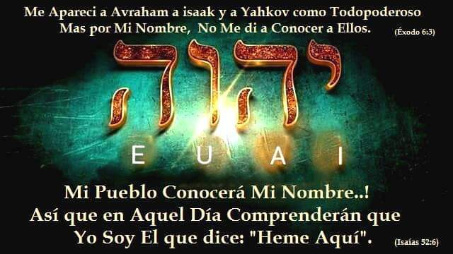 Shalom, yom tov - Página 17 _faceb15