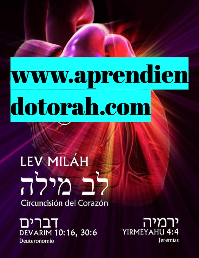 Shalom, yom tov - Página 4 Addtex11