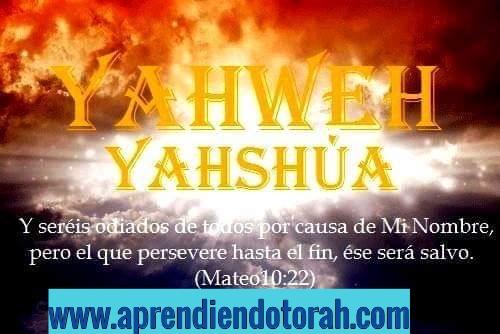 yirmeYah 29: 11 Addtex17
