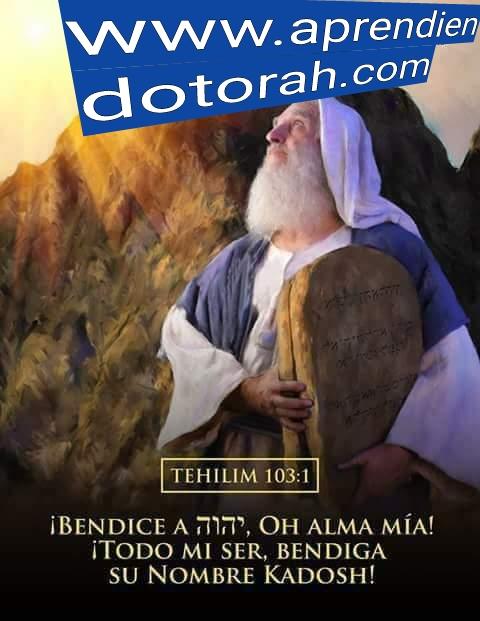 Shalom, yom tov - Página 15 Addtex18