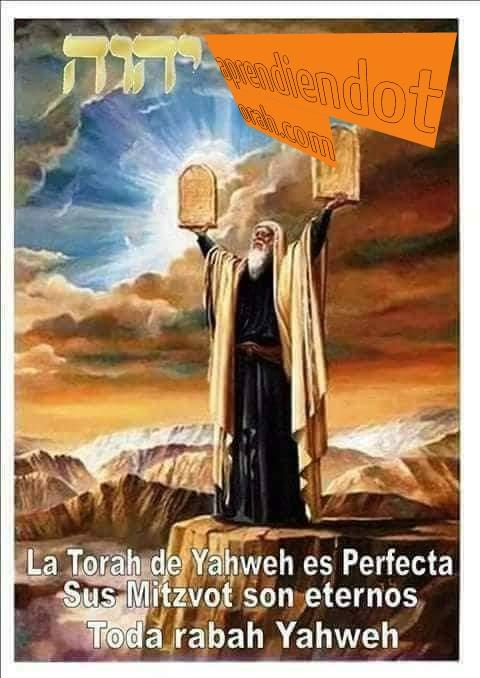 Shalom, yom tov - Página 16 Addtex19