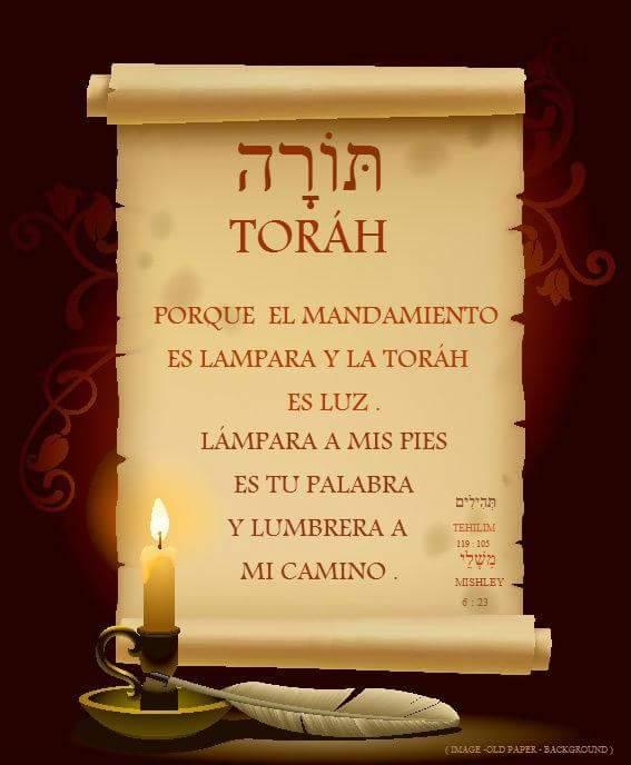 Shalom, yom tov - Página 10 Fb_img30