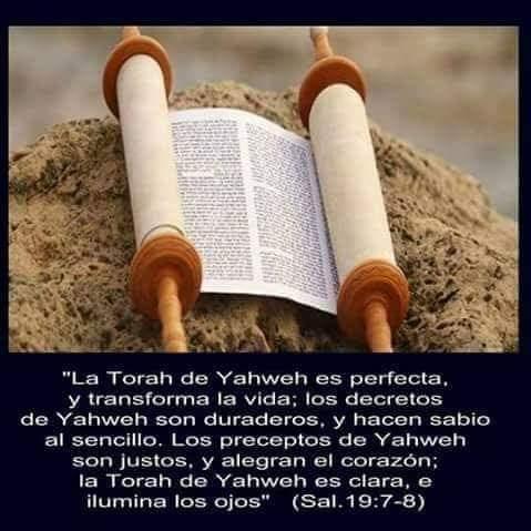 Shalom, yom tov - Página 13 Fb_img38