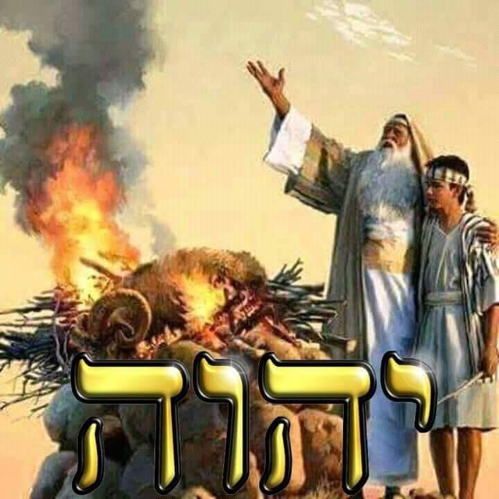 Shalom, yom tov - Página 13 Fb_img43