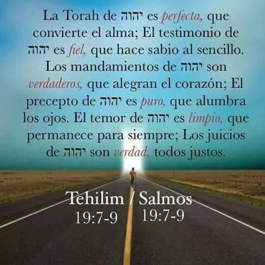 Shalom, yom tov - Página 13 Fb_img44
