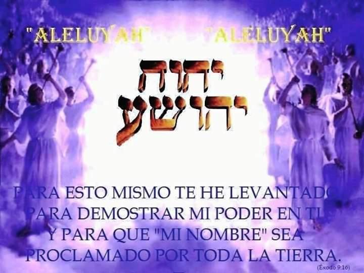 Shalom, yom tov - Página 14 Fb_img57