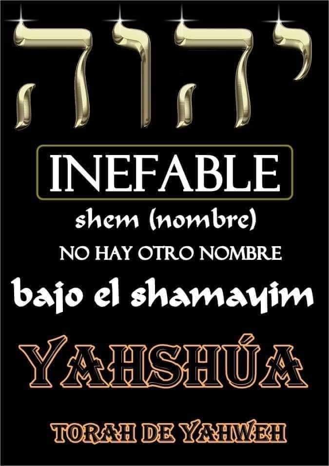 Shalom, yom tov - Página 17 Fb_img80
