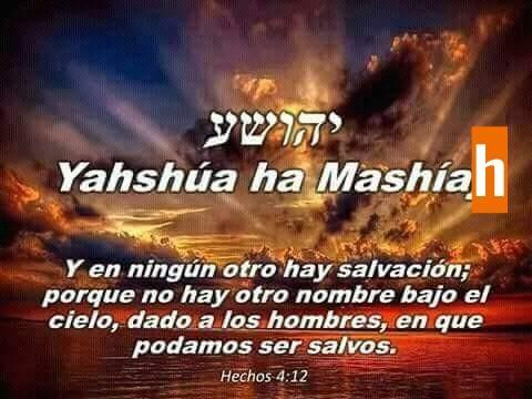 Shalom, yom tov - Página 35 Photo110