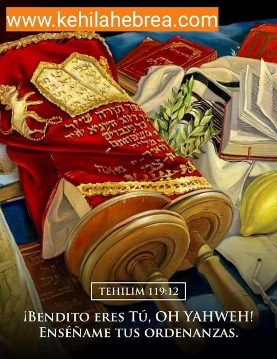 Shalom, yom tov - Página 35 Photo124