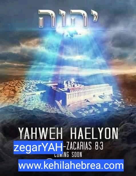 Shalom, yom tov - Página 35 Photo126