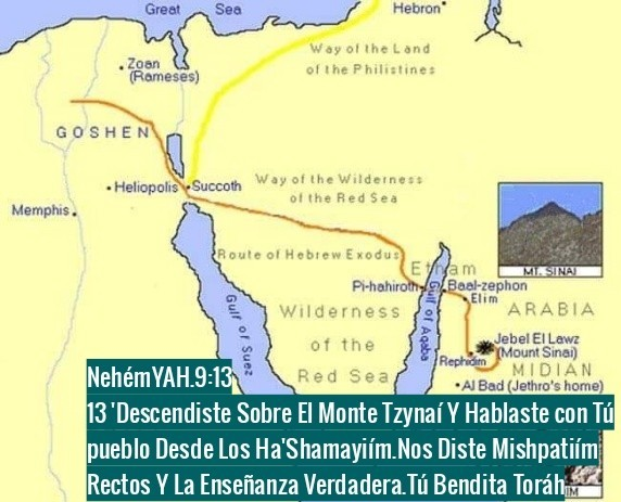 Shalom, yom tov - Página 35 Photo129