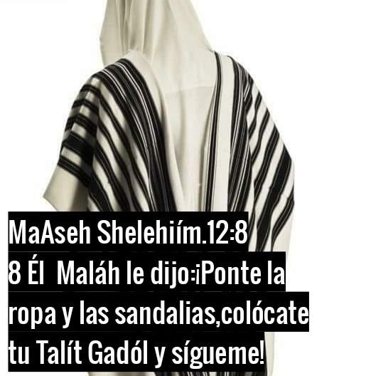 Shalom, yom tov - Página 38 Photo155