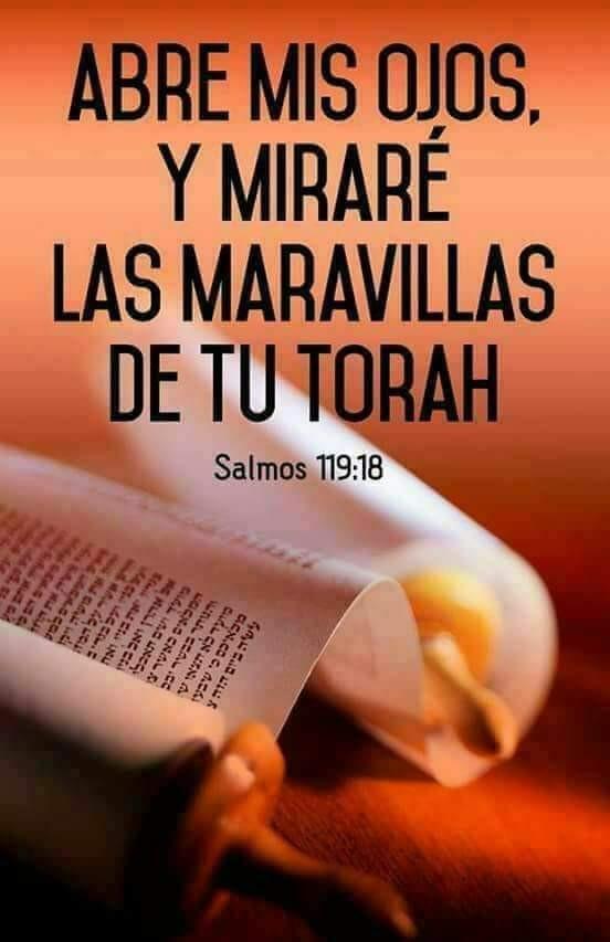 Shalom, yom tov - Página 38 Photo157