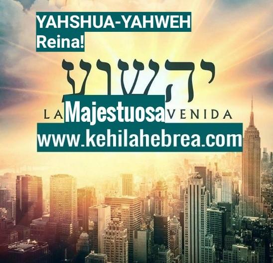 Shalom, yom tov - Página 40 Photo169