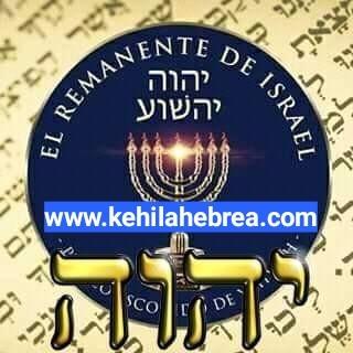 Shalom, yom tov - Página 4 Photo204