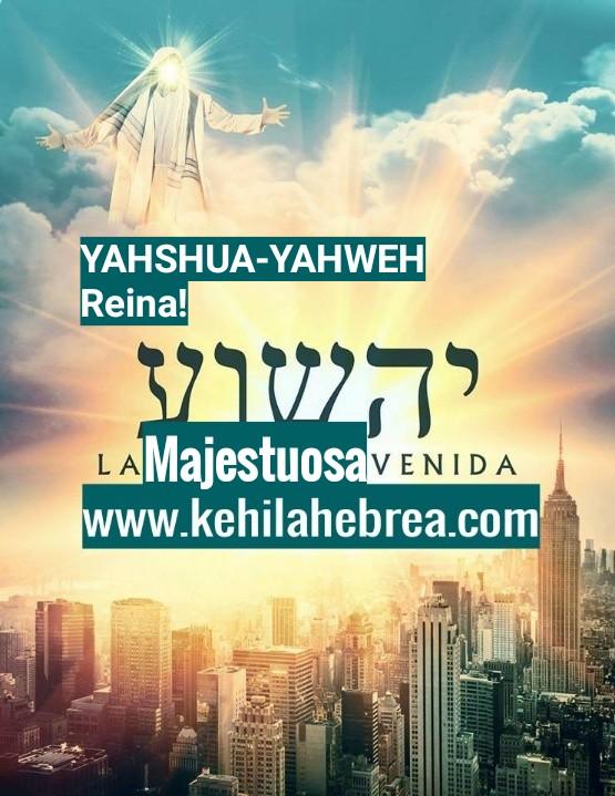 Shalom, yom tov - Página 4 Photo208