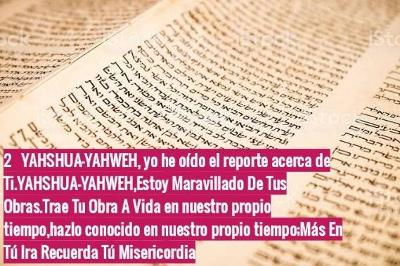 Shalom, yom tov - Página 6 Photo224