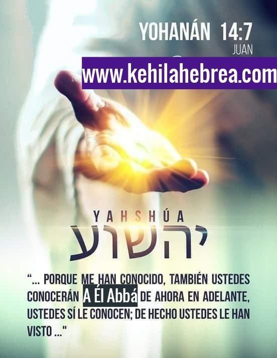 Shalom, yom tov - Página 7 Photo232