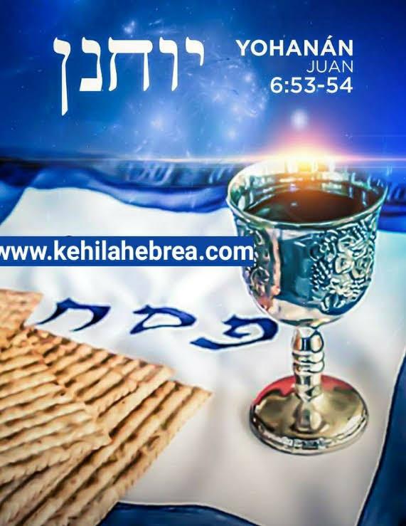 Shalom, yom tov - Página 13 Photo265