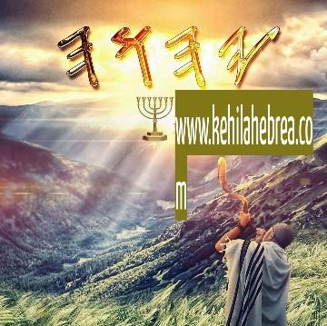 Shalom, yom tov - Página 33 Photop79