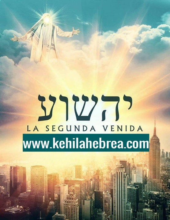Shalom, yom tov - Página 33 Photop85