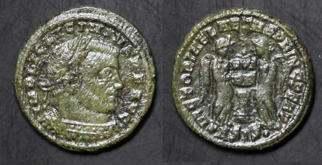 Mes dernières Licinius  Img_1310