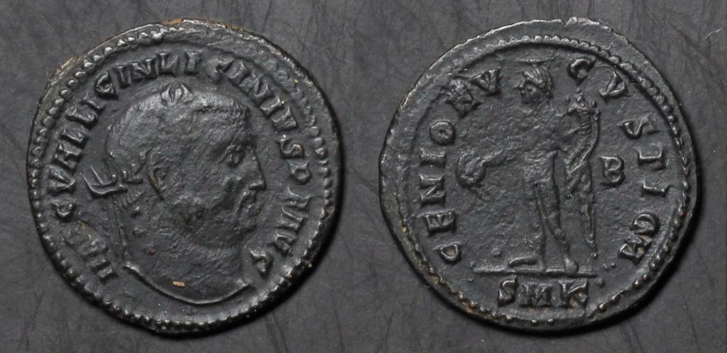 Mes dernières Licinius  Img_1311