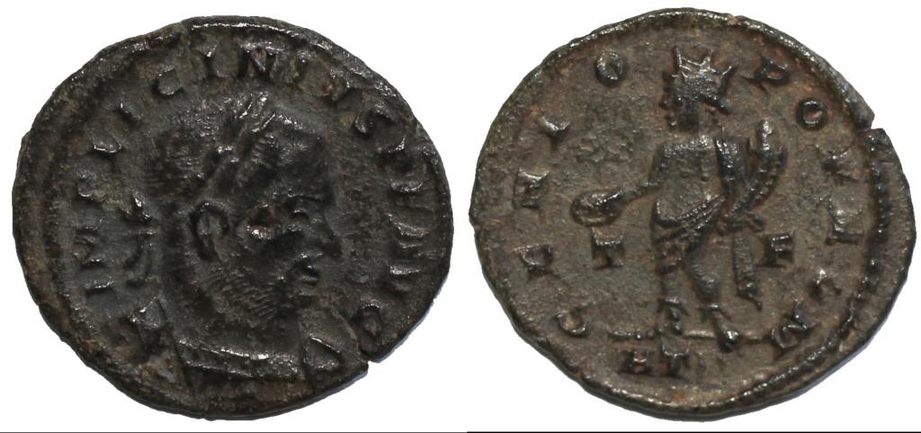 quelques Licinius (épisode 3) Img_7618