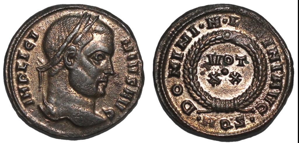 Mes dernières Licinius  Img_7713