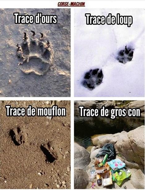 Une histoire de traces Trace10