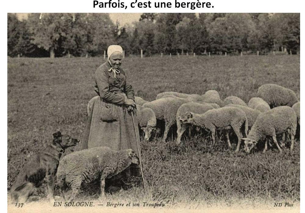 LES BERGERES  Sans_217