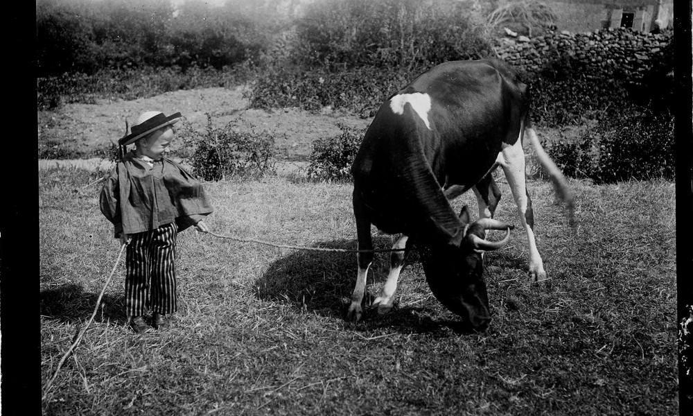 Garçonnet gardant une vache Sans_478