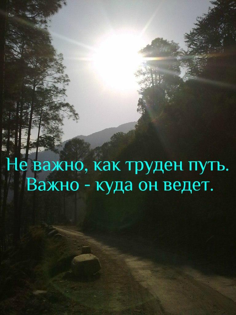 Охота в разгаре - Страница 19 8mqnyb12
