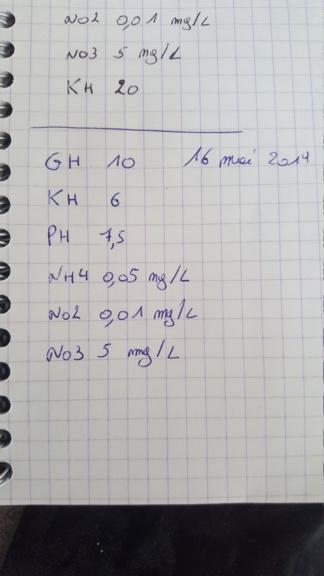 [HELP] gourami nain maigre - Page 2 20190516