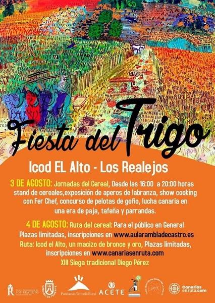 Fiesta del Trigo in Icod el Alto 51669-10