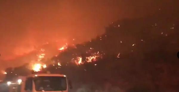 Forest fire in Gran Canaria 51688-10