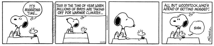 Peanuts. - Page 8 Capt1014