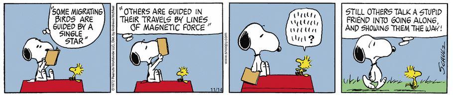Peanuts. - Page 8 Capt1021