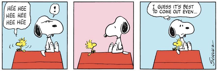 Peanuts. - Page 8 Capt1042