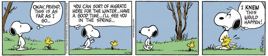 Peanuts. - Page 8 Capt1054