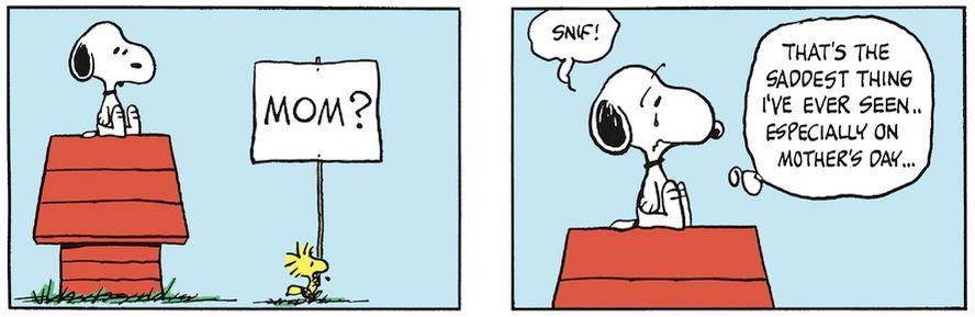 Peanuts. - Page 15 Capt1787