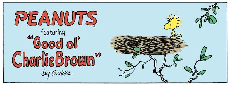 Peanuts. - Page 15 Capt1788