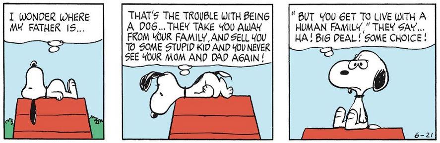 Peanuts. - Page 17 Capt1912