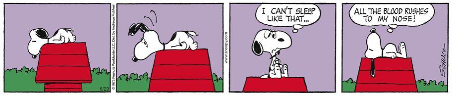 Peanuts. - Page 17 Capt1943