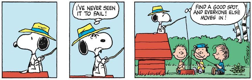 Peanuts. - Page 17 Capt1960